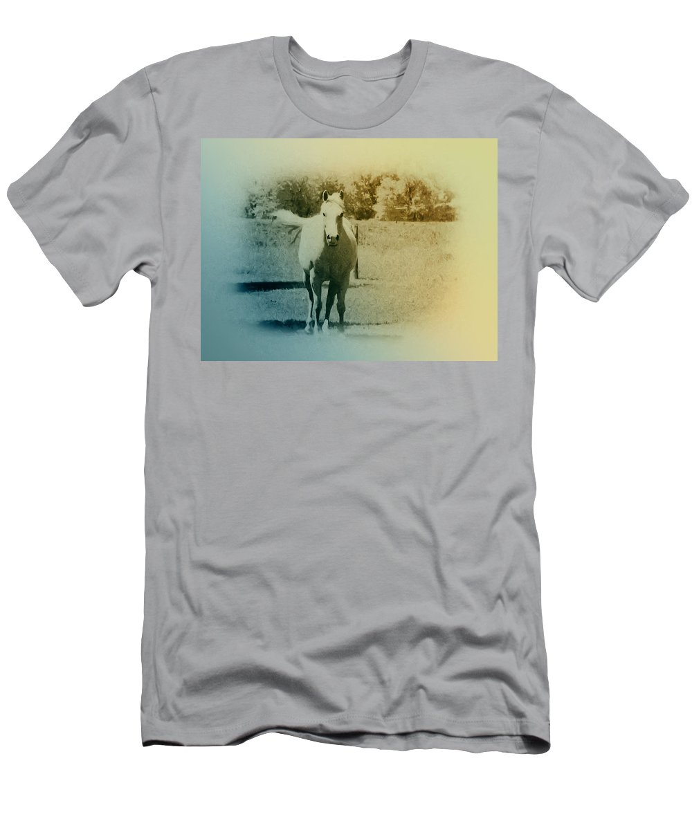 Horses T-Shirt featuring the photograph In the Meadow by Bill Cannon