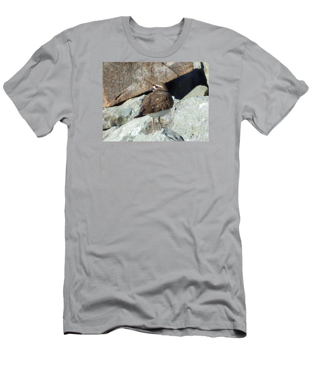 Kildeer Men's T-Shirt (Athletic Fit) featuring the photograph Kildeer On The Jetty by Andrea Freeman