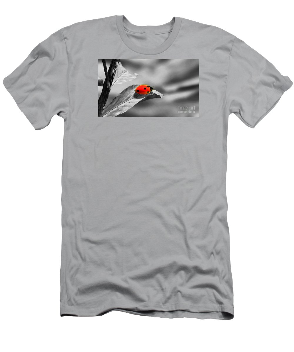 Ladybird Men's T-Shirt (Athletic Fit) featuring the photograph Ladybird by Sebastien Coell
