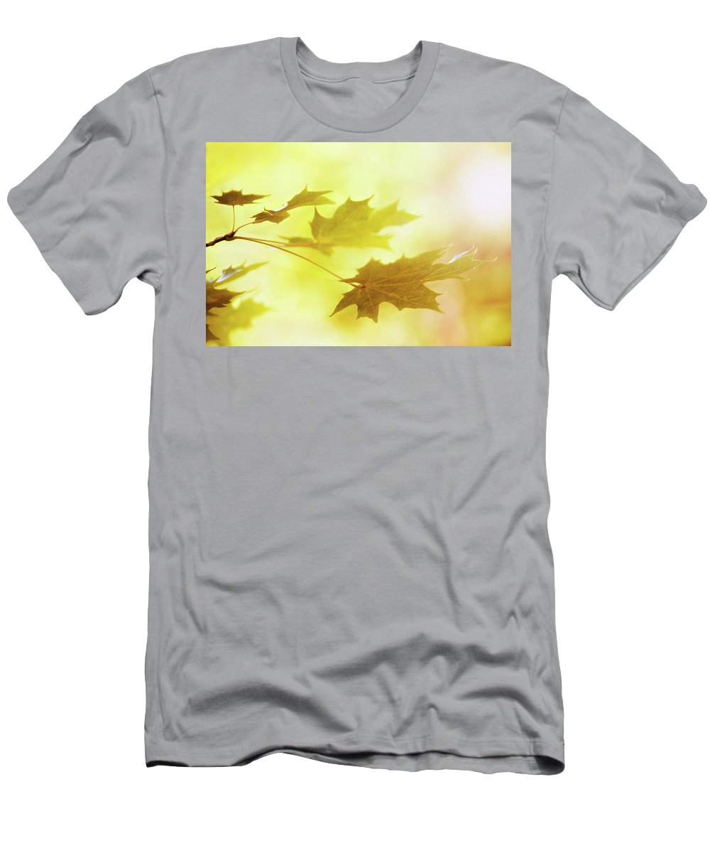 Leaf Men's T-Shirt (Athletic Fit) featuring the photograph Leafs by Risto Lavi