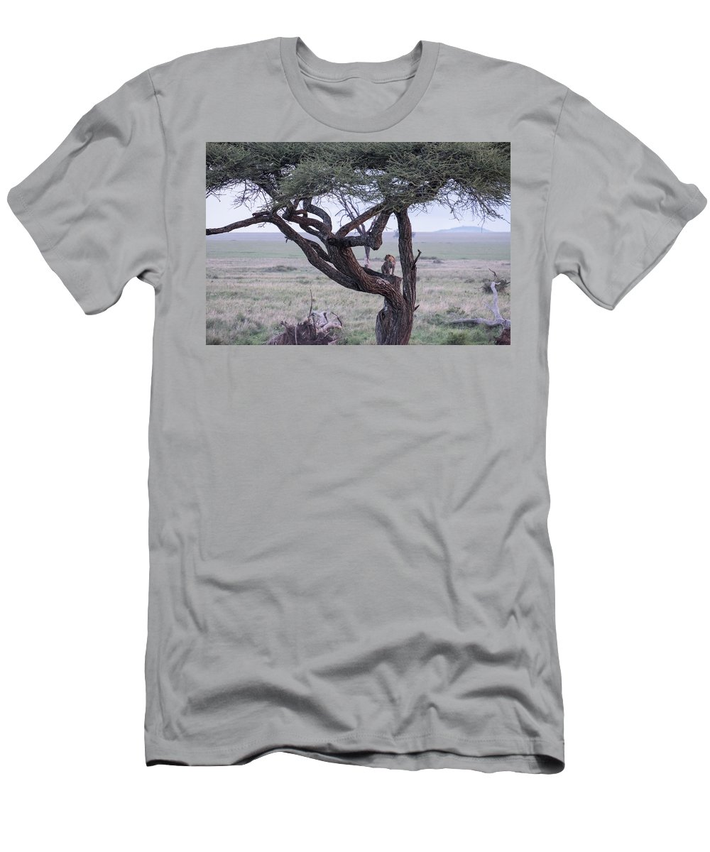 Leopard Men's T-Shirt (Athletic Fit) featuring the photograph Leopard by William Morgan