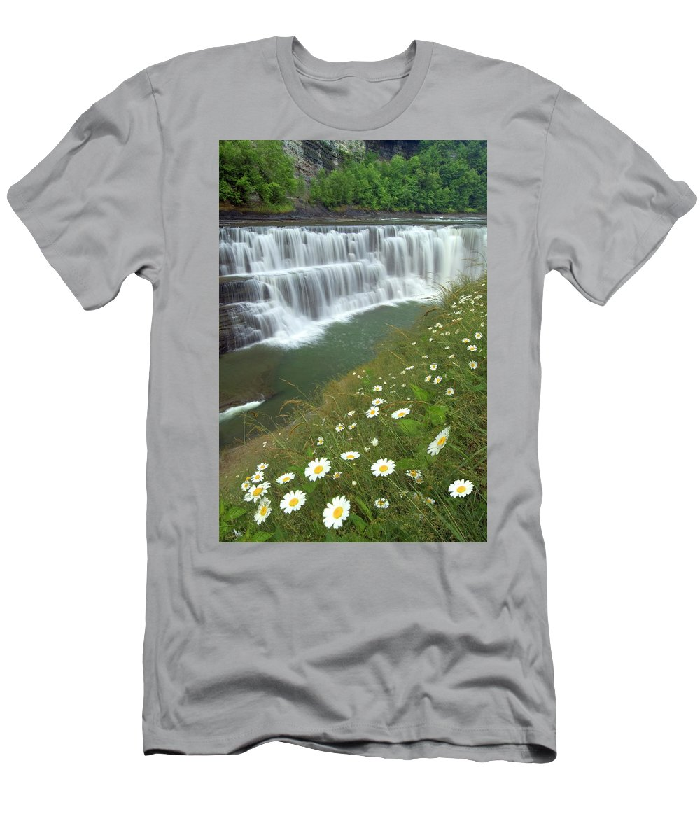 Letchworth Falls State Park Men's T-Shirt (Athletic Fit) featuring the photograph Letchworth Falls Sp Lower Falls Daisies by Dean Hueber