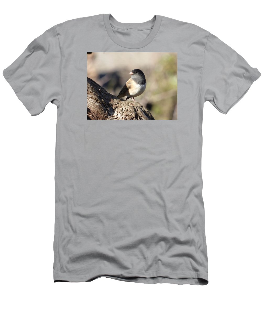 Dark-eyed Junco Men's T-Shirt (Athletic Fit) featuring the photograph Light And Dark Of A Junco by Andrea Freeman