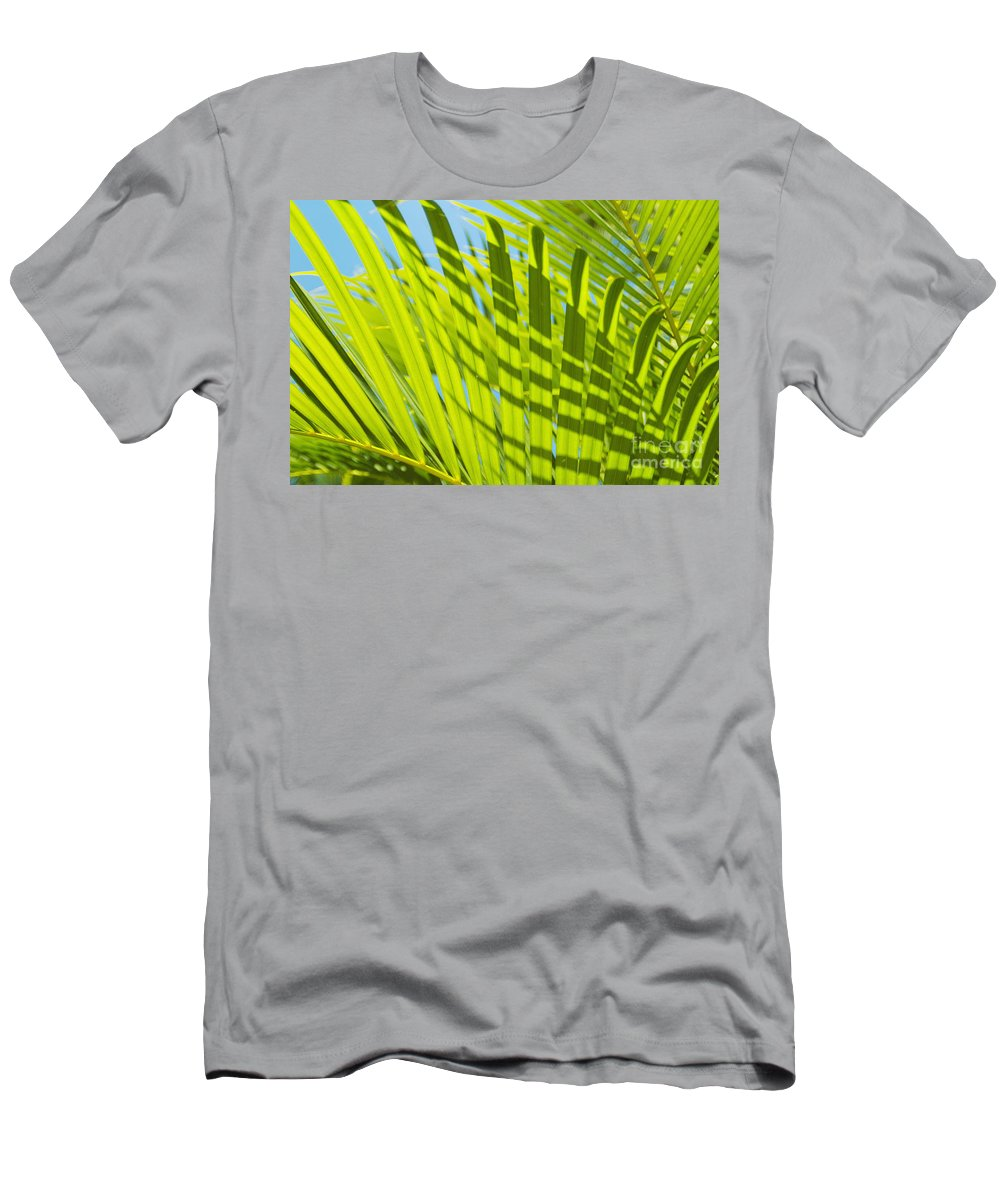 Afternoon Men's T-Shirt (Athletic Fit) featuring the photograph Light Green Palm Leaves by Mary Van de Ven - Printscapes