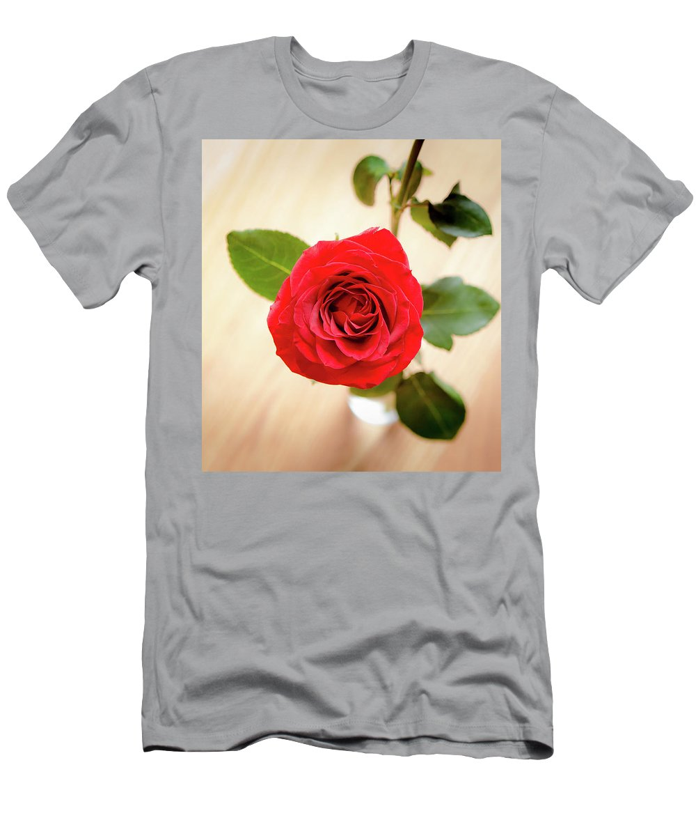 Flower Men's T-Shirt (Athletic Fit) featuring the photograph Look Down On A Rose by Ben McLachlan