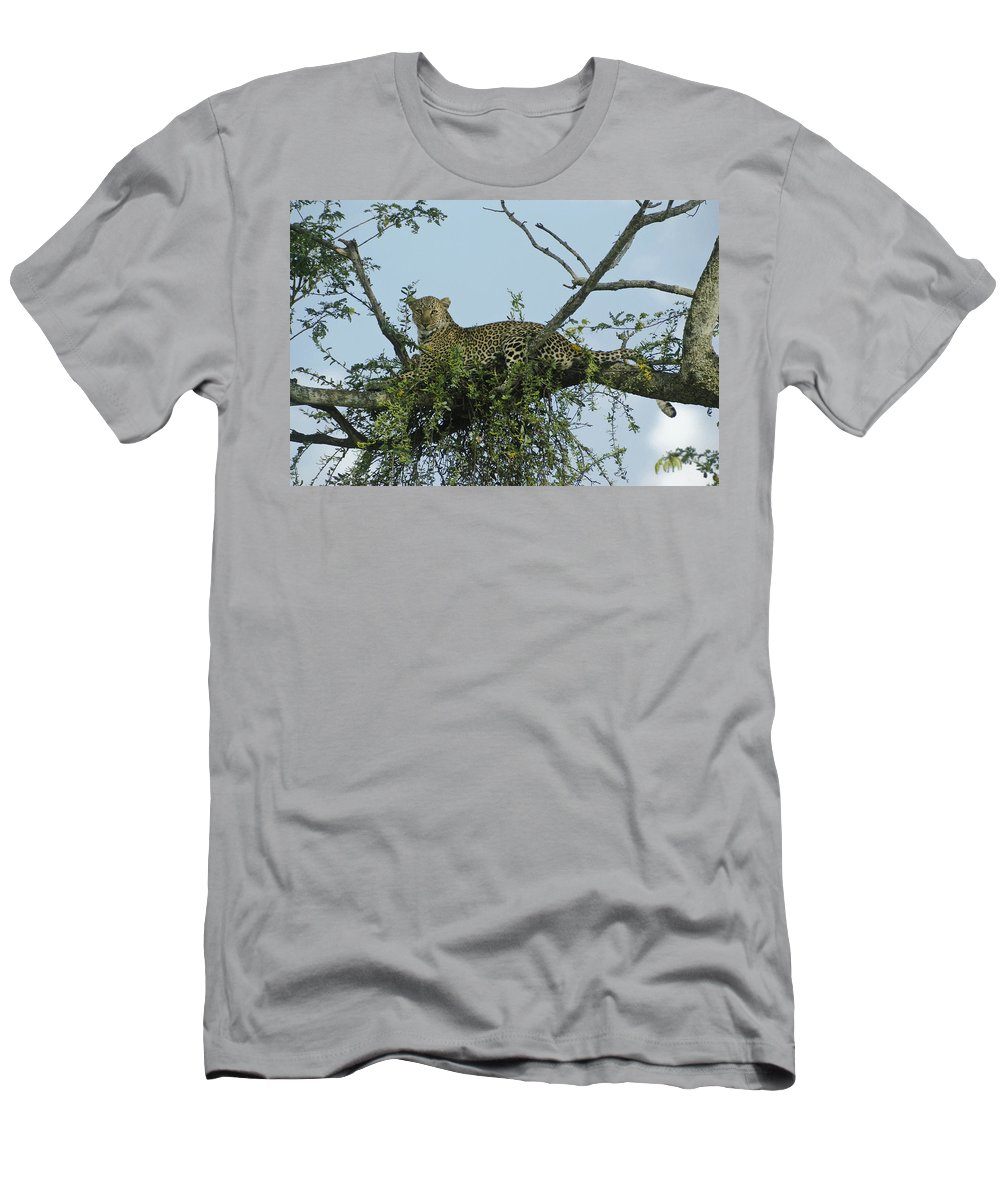 Africa T-Shirt featuring the photograph Lounging Leopard by Michele Burgess