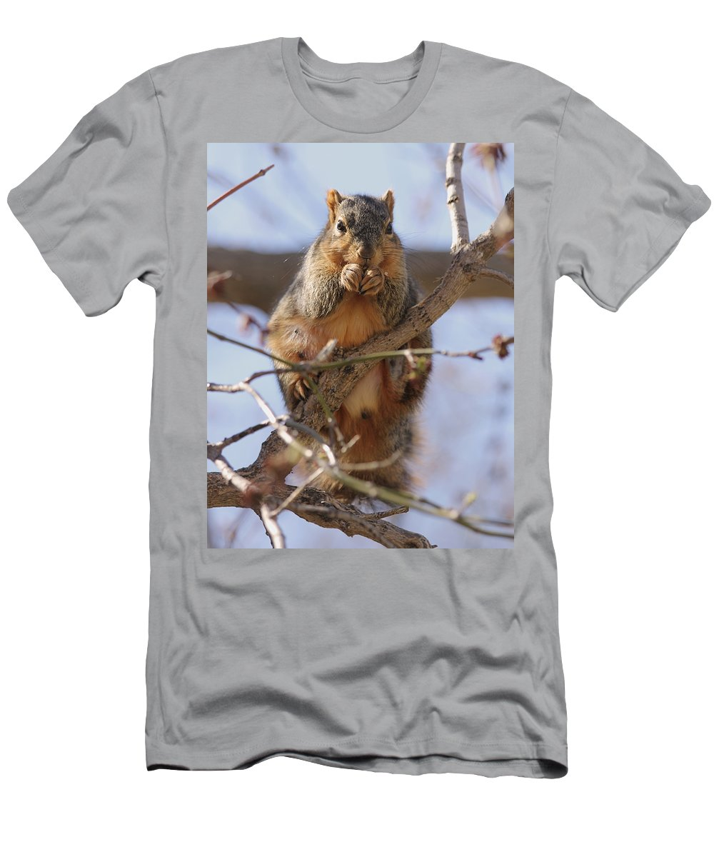 Squirrel Men's T-Shirt (Athletic Fit) featuring the photograph Lunch by Lori Tordsen