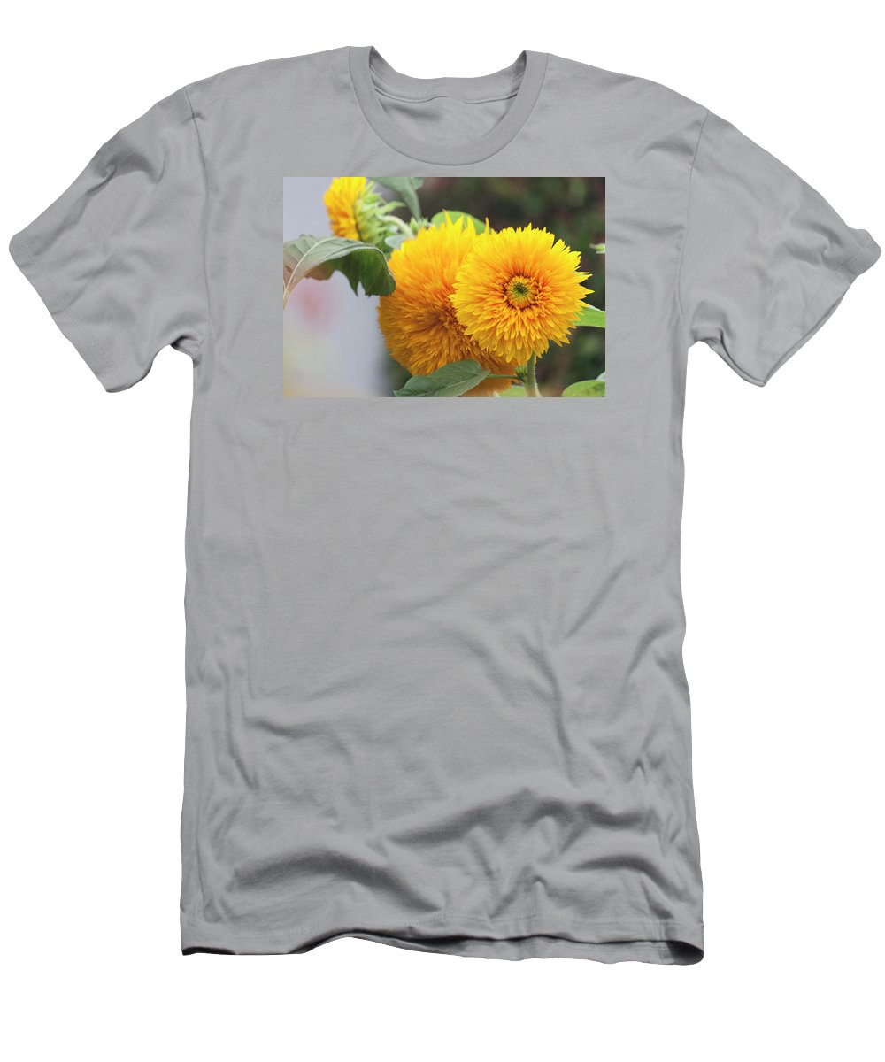 Photograph Men's T-Shirt (Athletic Fit) featuring the photograph Lush Sunflowers by Suzanne Gaff