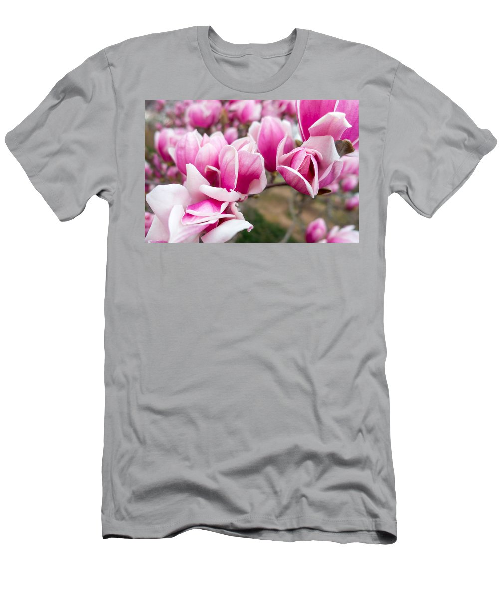 Washington Dc Men's T-Shirt (Athletic Fit) featuring the photograph Magnolia Spray by SR Green