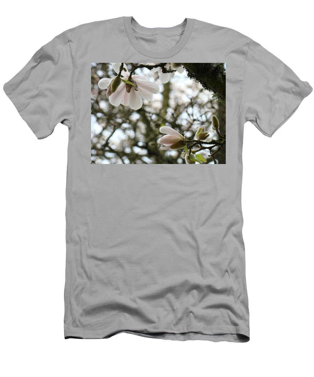 Magnolia Men's T-Shirt (Athletic Fit) featuring the photograph Magnolia Tree Flowers Pink White Magnolia Flowers Spring Artwork by Baslee Troutman