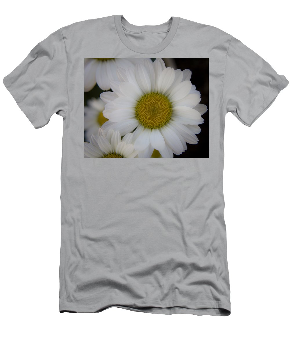Marguerite Men's T-Shirt (Athletic Fit) featuring the photograph Marguerite Daisies by Teresa Mucha