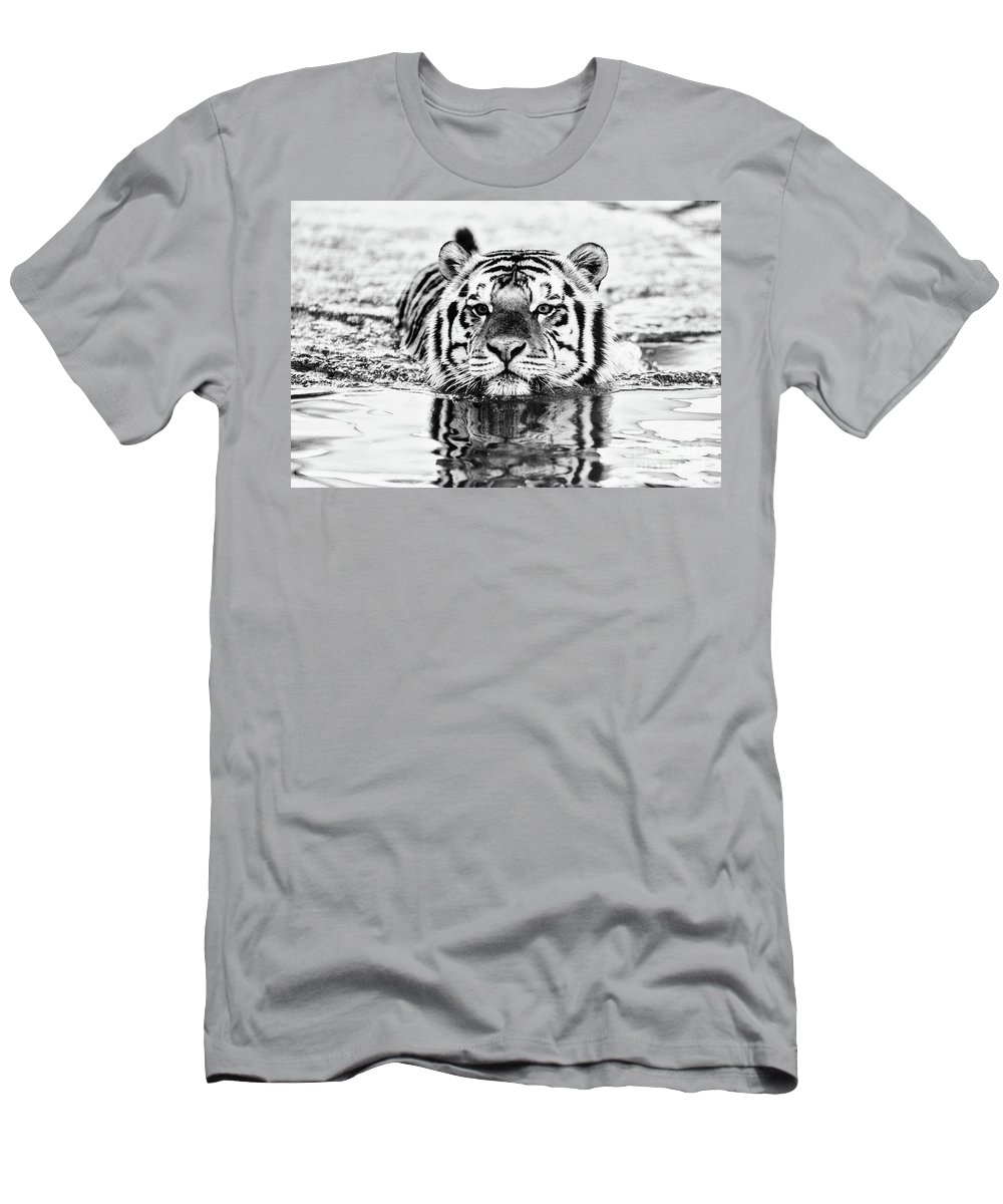 Tiger Men's T-Shirt (Athletic Fit) featuring the photograph Big Mike by Scott Pellegrin