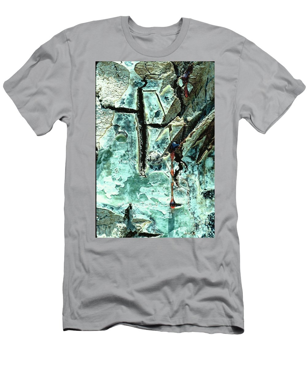 Trees Men's T-Shirt (Athletic Fit) featuring the photograph Mono Birch Bark by Norman Andrus