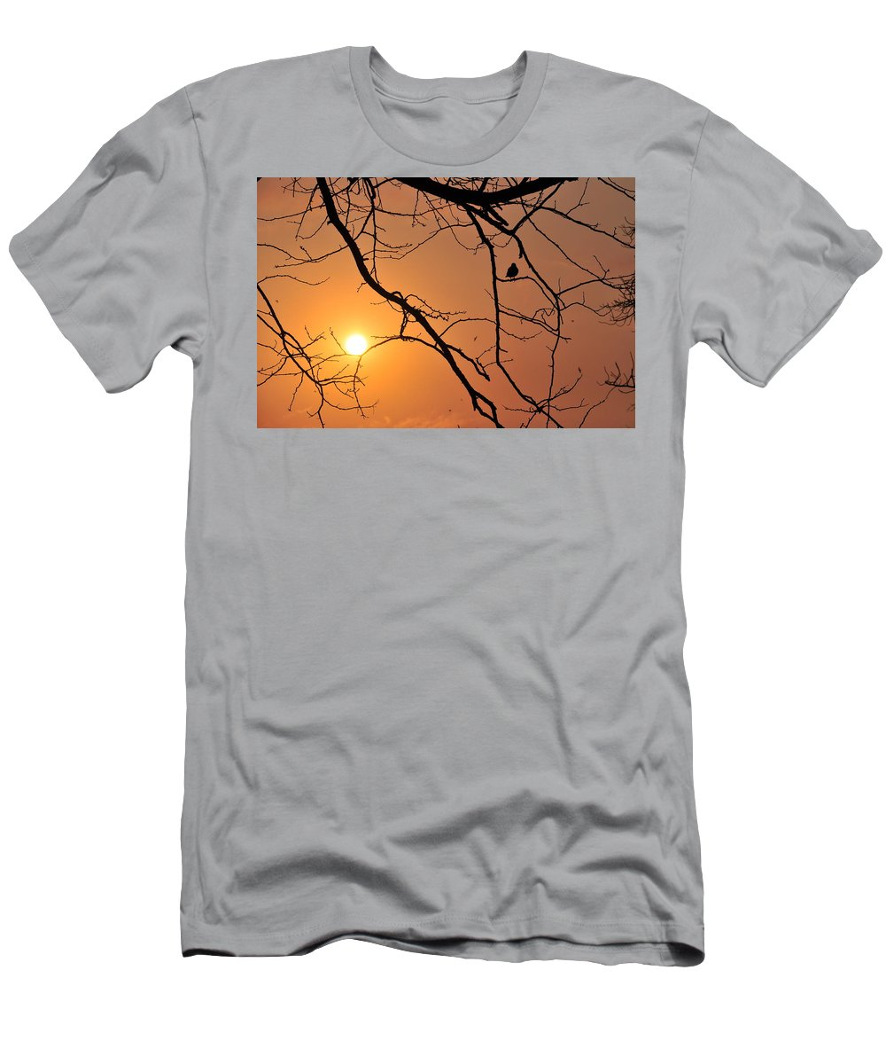 Sunrise Men's T-Shirt (Athletic Fit) featuring the photograph Morning Sunrise by Lens and Pencil Studios
