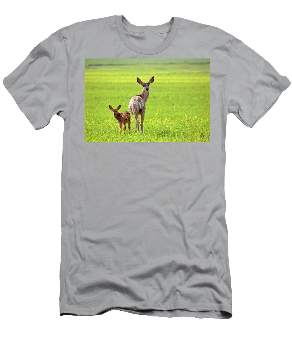 Mule Deer Men's T-Shirt (Athletic Fit) featuring the digital art Mule Deer Doe And Fawn Looking Back Over Their Shoulders by Mark Duffy