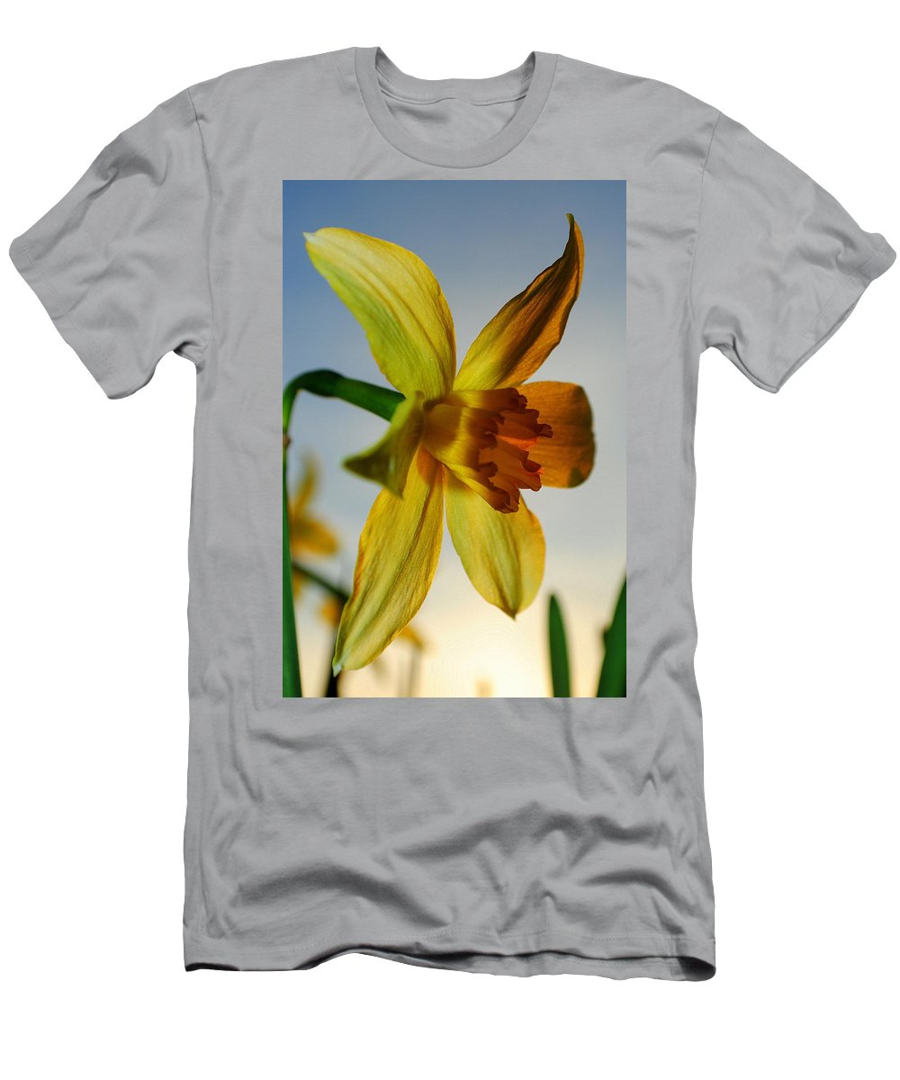 Sunset Men's T-Shirt (Athletic Fit) featuring the photograph Natures Beauty by Frozen in Time Fine Art Photography