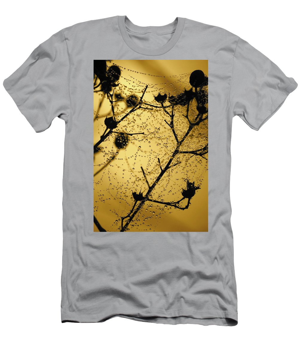 Dewdrops On Spider Web Men's T-Shirt (Athletic Fit) featuring the photograph Nature's Lace Curtain by Carol Groenen