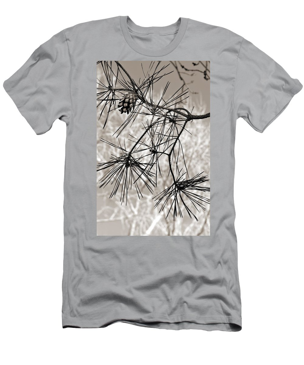 Tree Men's T-Shirt (Athletic Fit) featuring the photograph Needles Everywhere by Marilyn Hunt