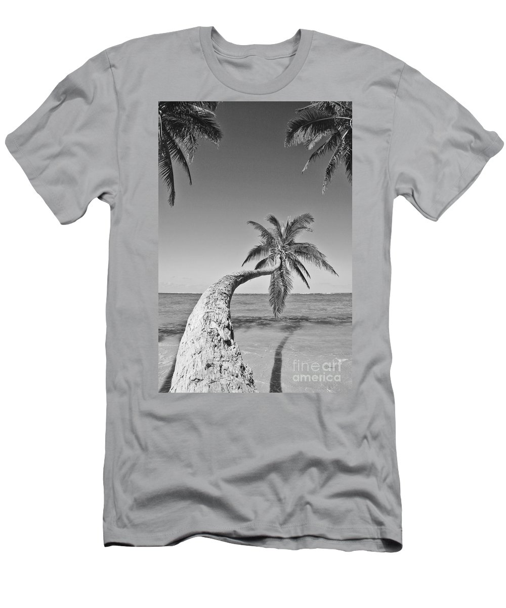 Afternoon Men's T-Shirt (Athletic Fit) featuring the photograph Oahu Palms by Tomas del Amo - Printscapes
