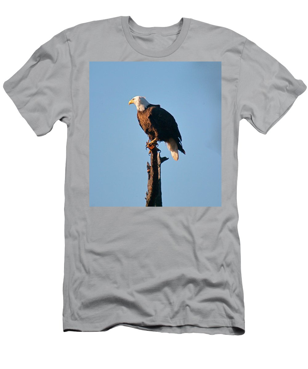 Eagle Men's T-Shirt (Athletic Fit) featuring the photograph On The Look Out by Robert Pearson