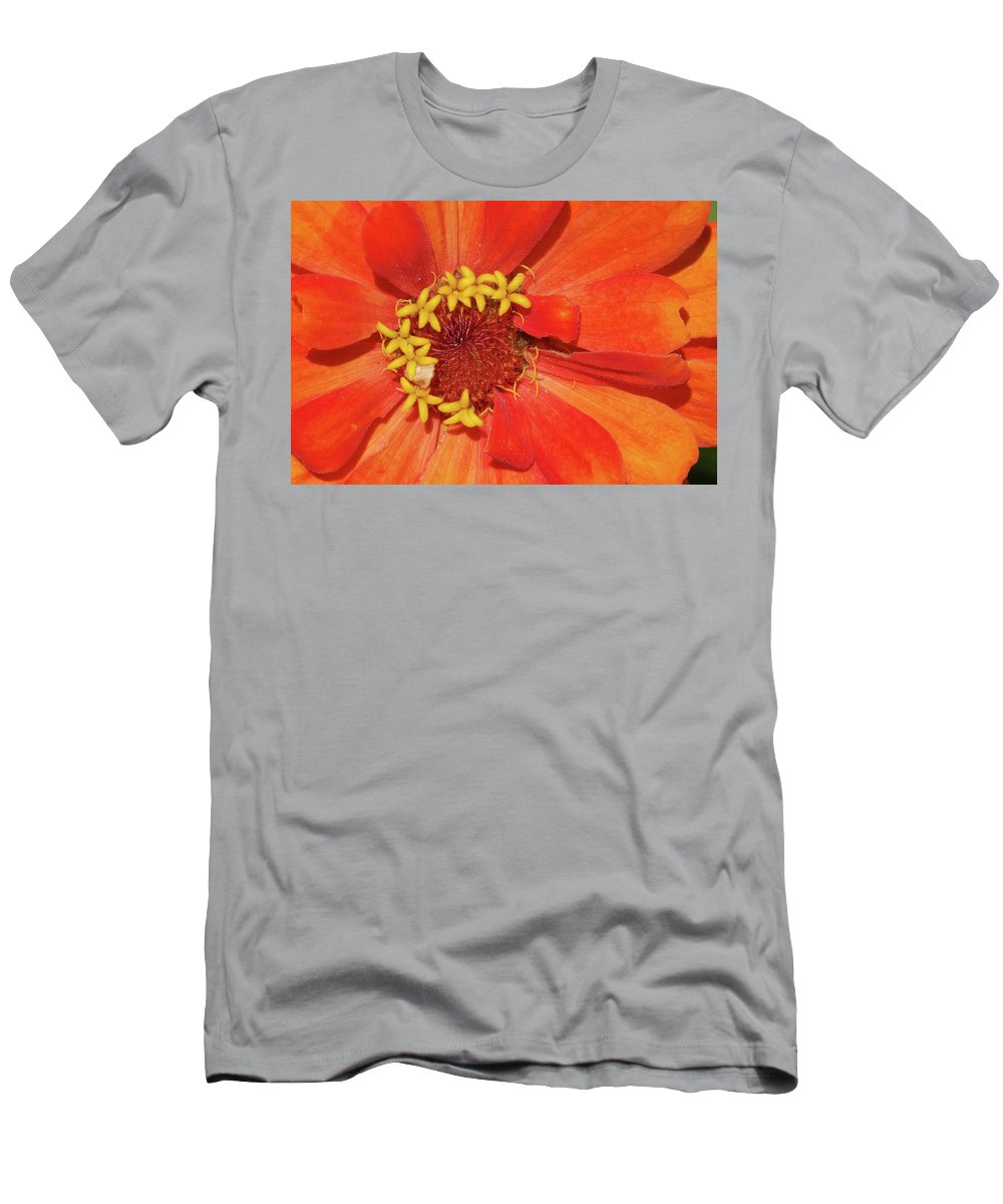 Flowers Men's T-Shirt (Athletic Fit) featuring the photograph Orange Flower Macro by Nancy Aurand-Humpf