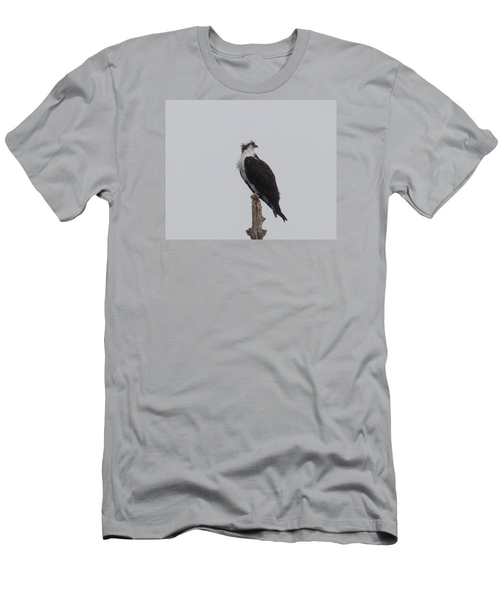 Osprey Men's T-Shirt (Athletic Fit) featuring the photograph Osprey Lookout by Andrea Freeman