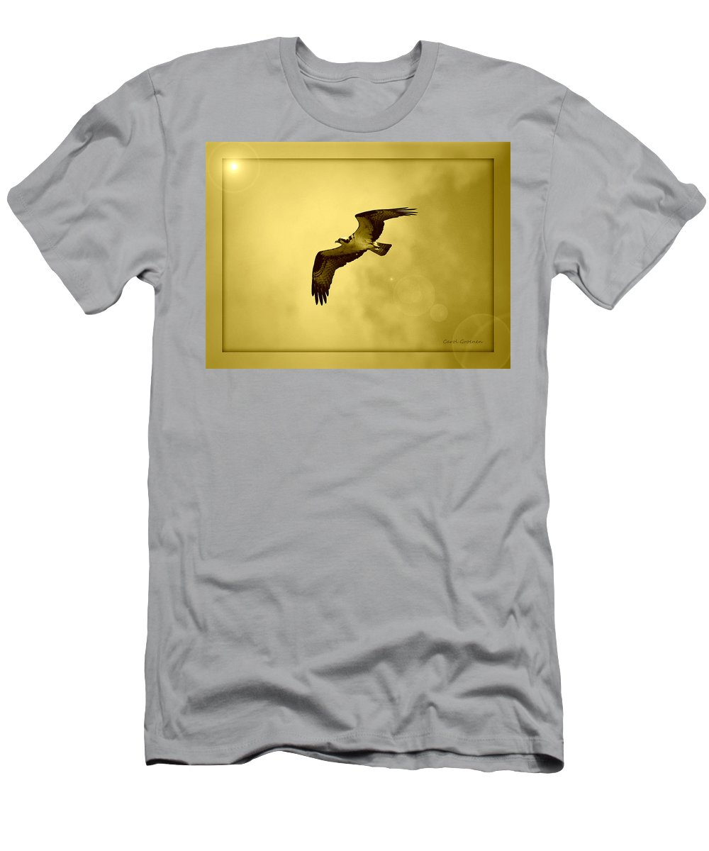 Osprey Men's T-Shirt (Athletic Fit) featuring the photograph Osprey Soaring Into Golden Sunlight by Carol Groenen