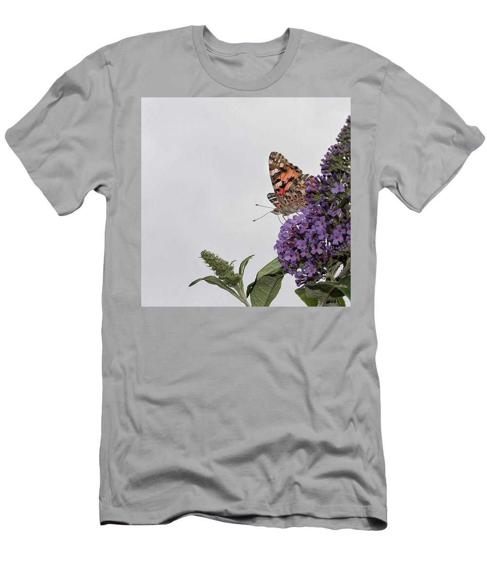 Insectsofinstagram T-Shirt featuring the photograph Painted Lady (vanessa Cardui) by John Edwards