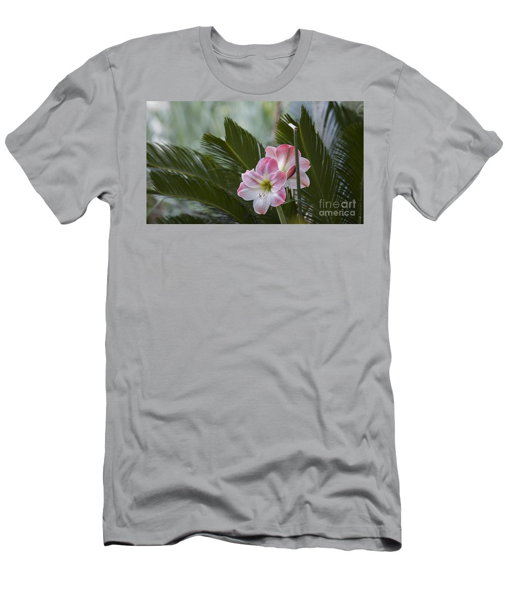 Daylilie Men's T-Shirt (Athletic Fit) featuring the photograph Palm Flower by Dale Powell