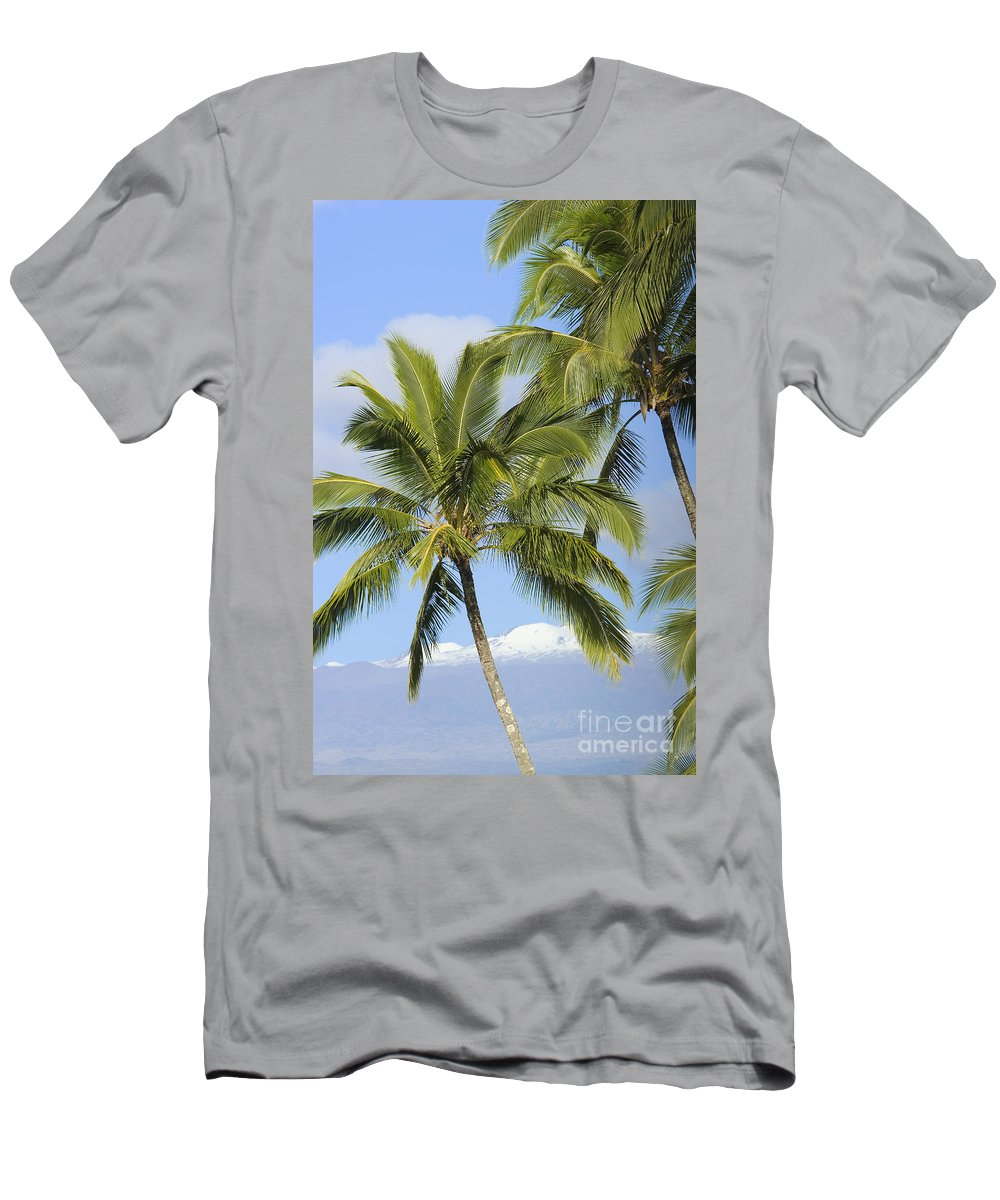 Blue Men's T-Shirt (Athletic Fit) featuring the photograph Palms And Mountaintops by Ron Dahlquist - Printscapes