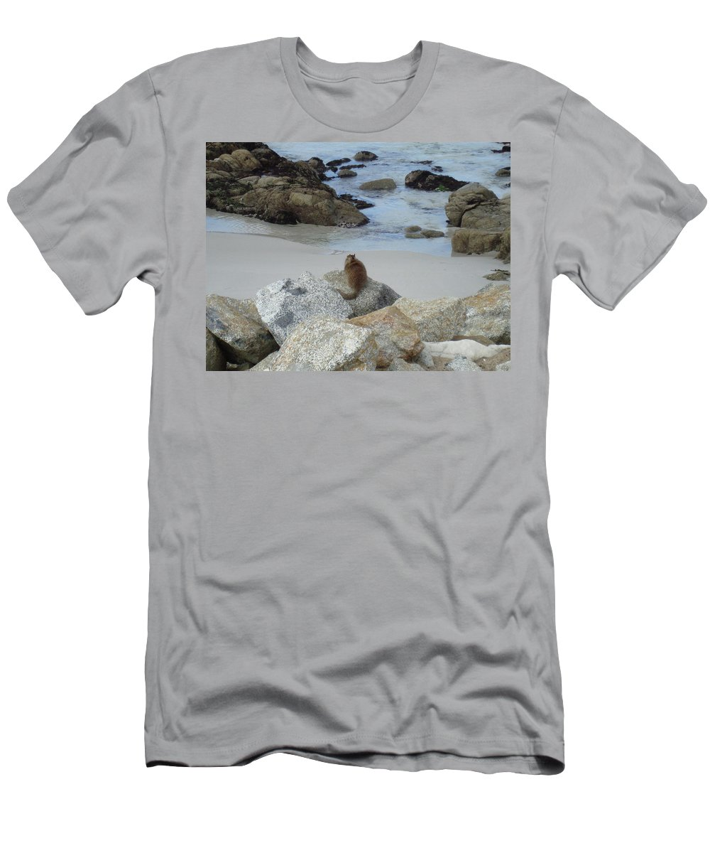 Animal Men's T-Shirt (Athletic Fit) featuring the photograph Patiently Waiting by Cathi Abbiss Crane