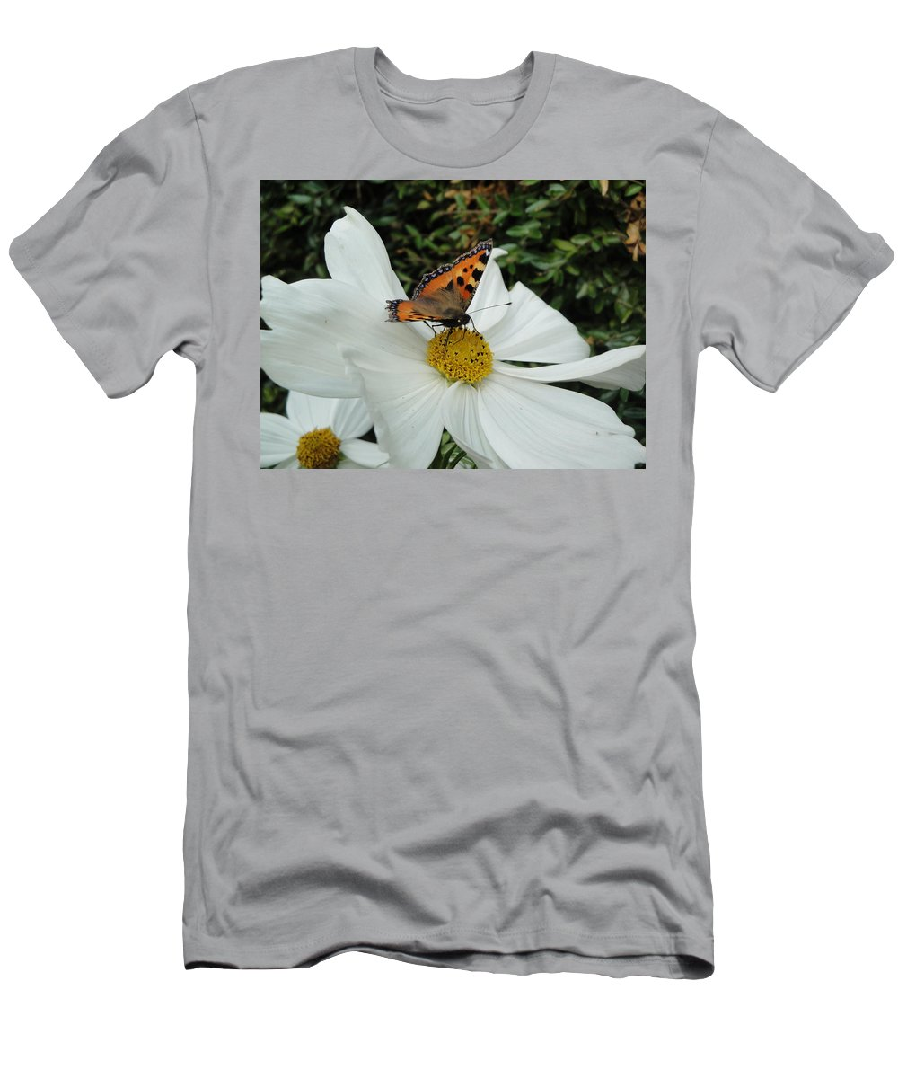 Butterfly Men's T-Shirt (Athletic Fit) featuring the photograph Peacock Butterfly On Cosmos by Susan Baker