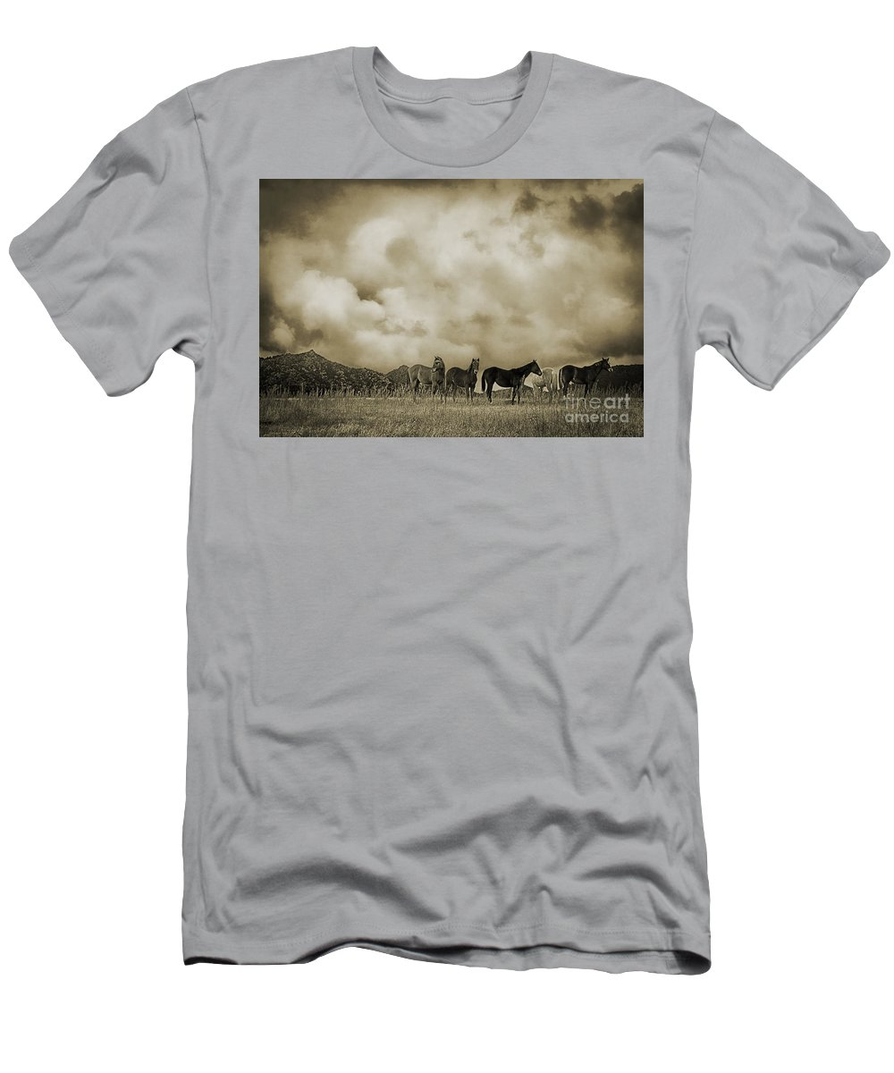 Peeples Valley Horses In Sepia Men's T-Shirt (Athletic Fit) featuring the photograph Peeples Valley Horses In Sepia by Priscilla Burgers