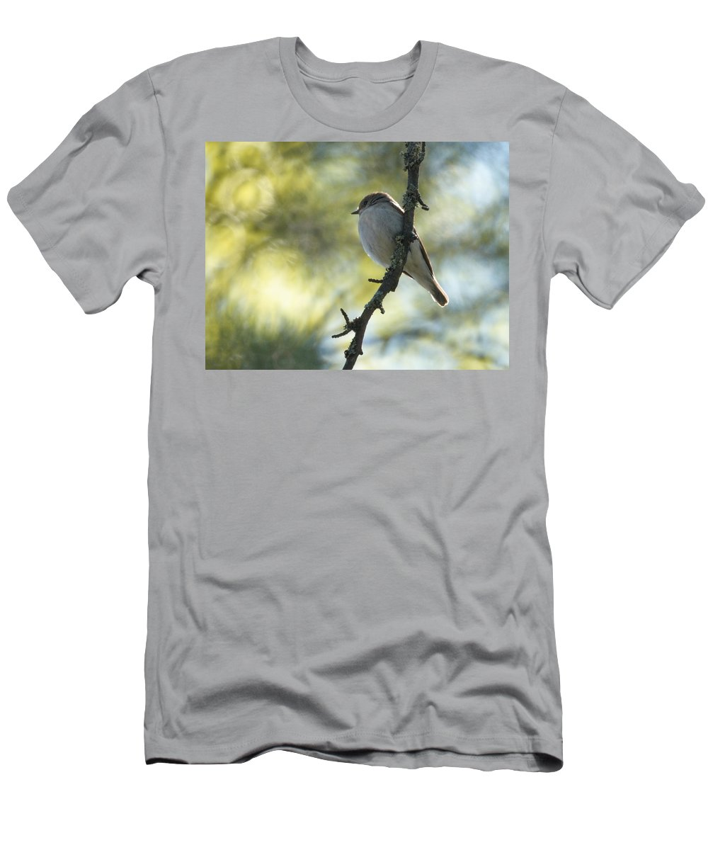 Lehtokukka Men's T-Shirt (Athletic Fit) featuring the photograph Pied Flycatcher 1 by Jouko Lehto