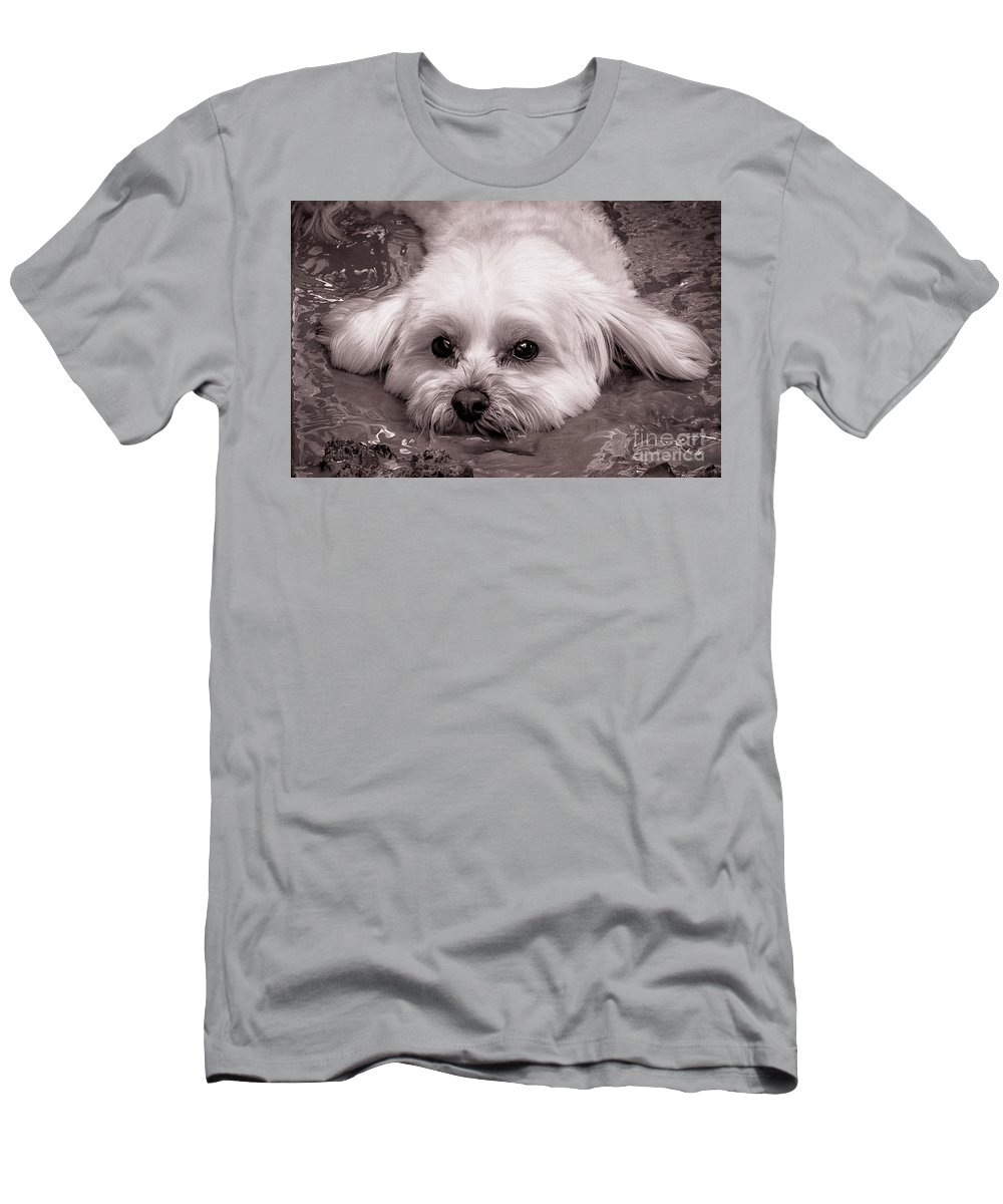 Dog Men's T-Shirt (Athletic Fit) featuring the photograph Pig Pen by Wayne Heim