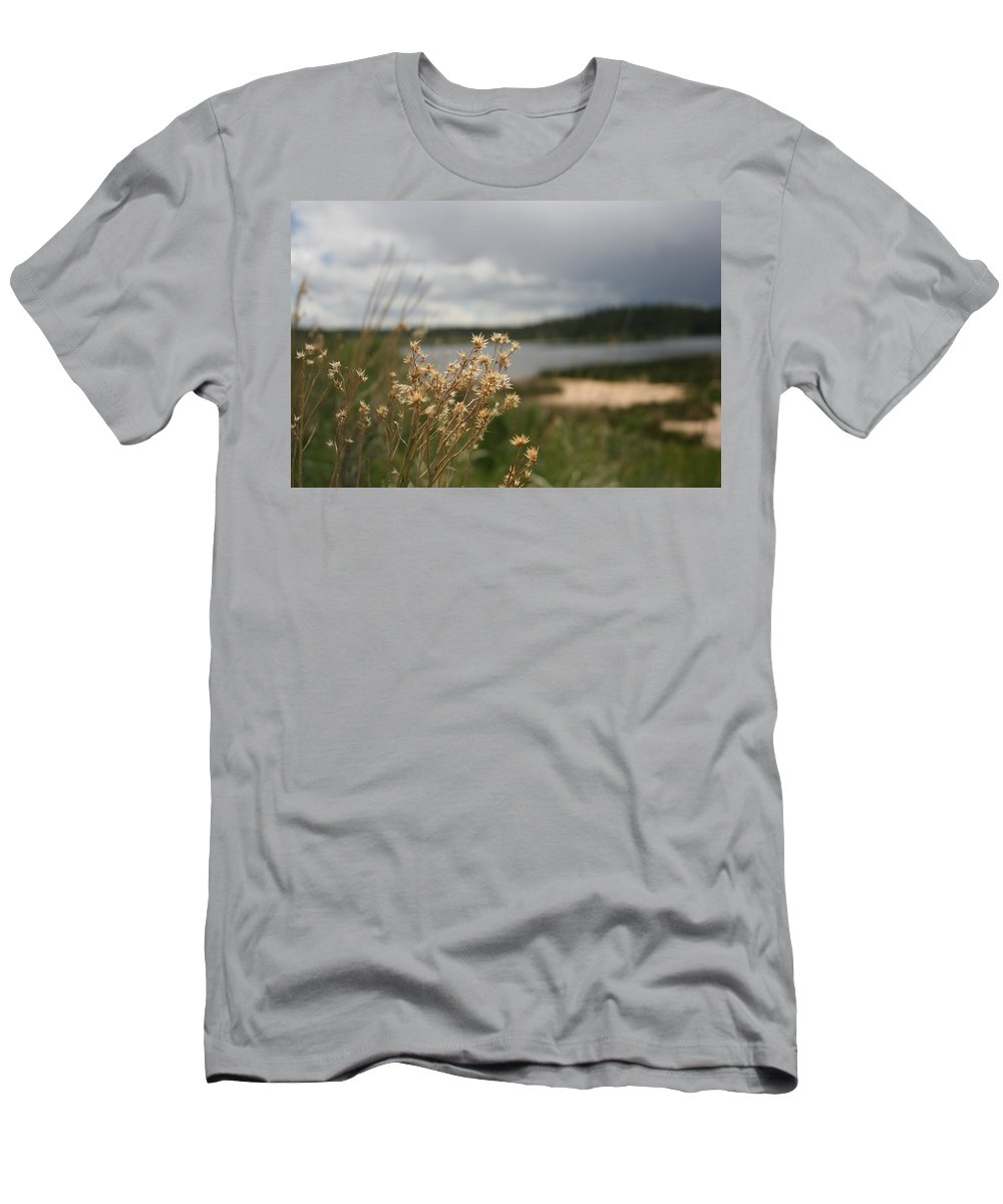 Plants Men's T-Shirt (Athletic Fit) featuring the photograph Plants by Ashlyn Yates