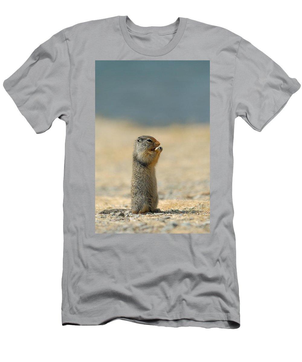 Prairie Dog Men's T-Shirt (Athletic Fit) featuring the photograph Prairie Dog by Sebastian Musial