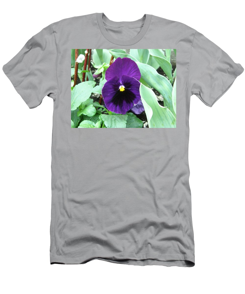 Purple Pansy Men's T-Shirt (Athletic Fit) featuring the photograph Purple Pansy by Alice Markham