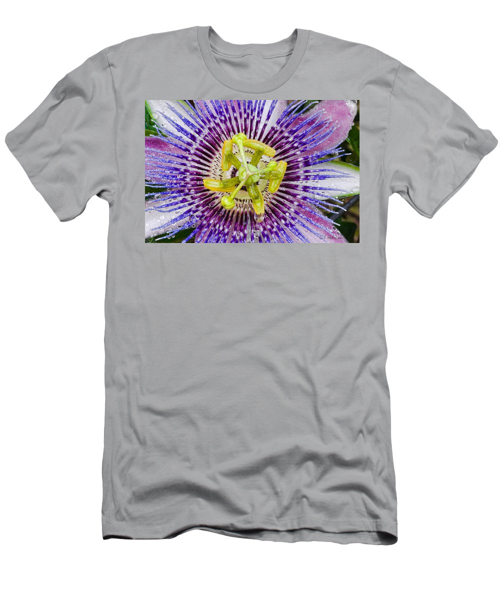 Passion Men's T-Shirt (Athletic Fit) featuring the photograph Purple Radial by Christopher Holmes