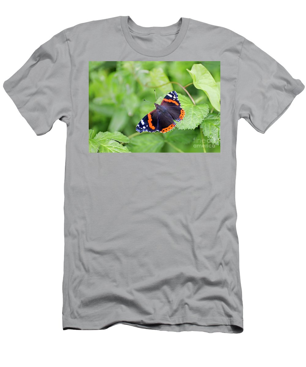 Vanessa Atalanta Men's T-Shirt (Athletic Fit) featuring the photograph Red Admiral by Sebastien Coell
