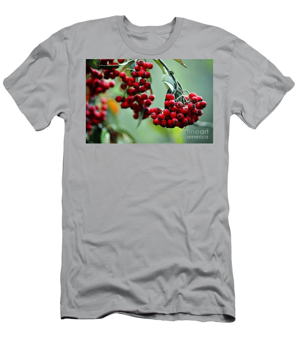 Clay Men's T-Shirt (Athletic Fit) featuring the photograph Red Berries by Clayton Bruster