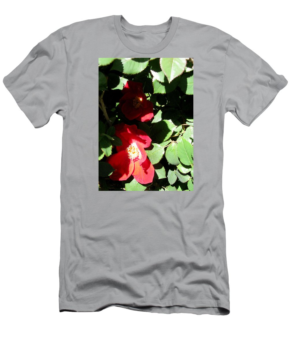 Camelia Men's T-Shirt (Athletic Fit) featuring the photograph Red Camelias by Zau