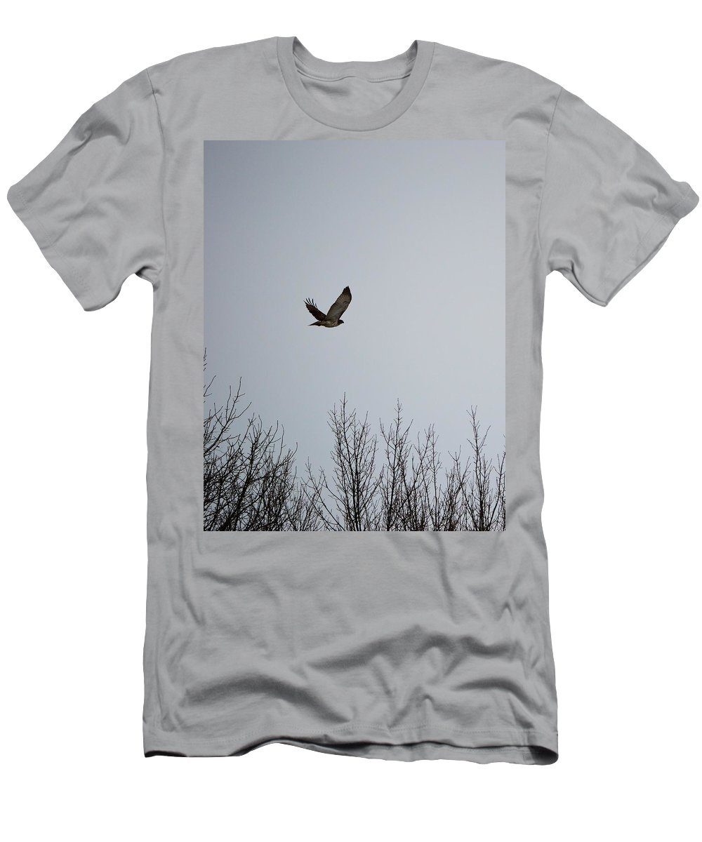 Hawk Men's T-Shirt (Athletic Fit) featuring the photograph Red Tail Hawk by Bonfire Photography