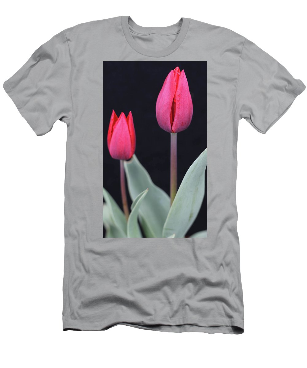 Tulips Men's T-Shirt (Athletic Fit) featuring the photograph Red Tulips by Norman Saagman