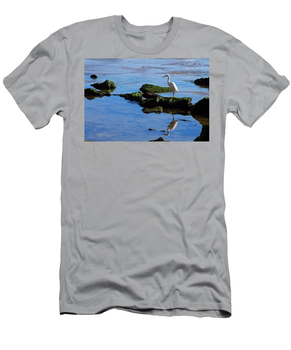 Clay Men's T-Shirt (Athletic Fit) featuring the photograph Reflecting On Dinner by Clayton Bruster
