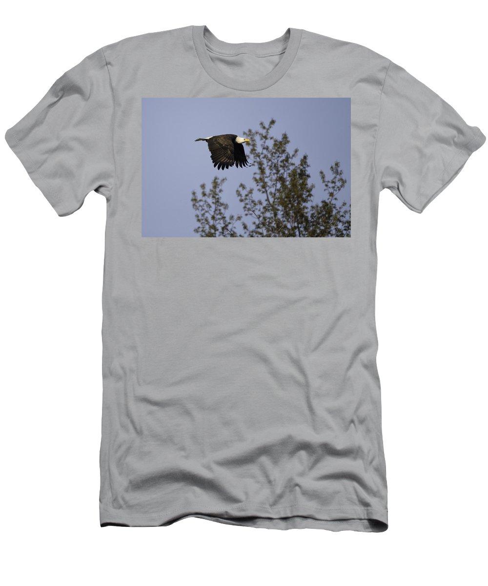 Bald Eagle Men's T-Shirt (Athletic Fit) featuring the photograph Regal Eagle by Everet Regal