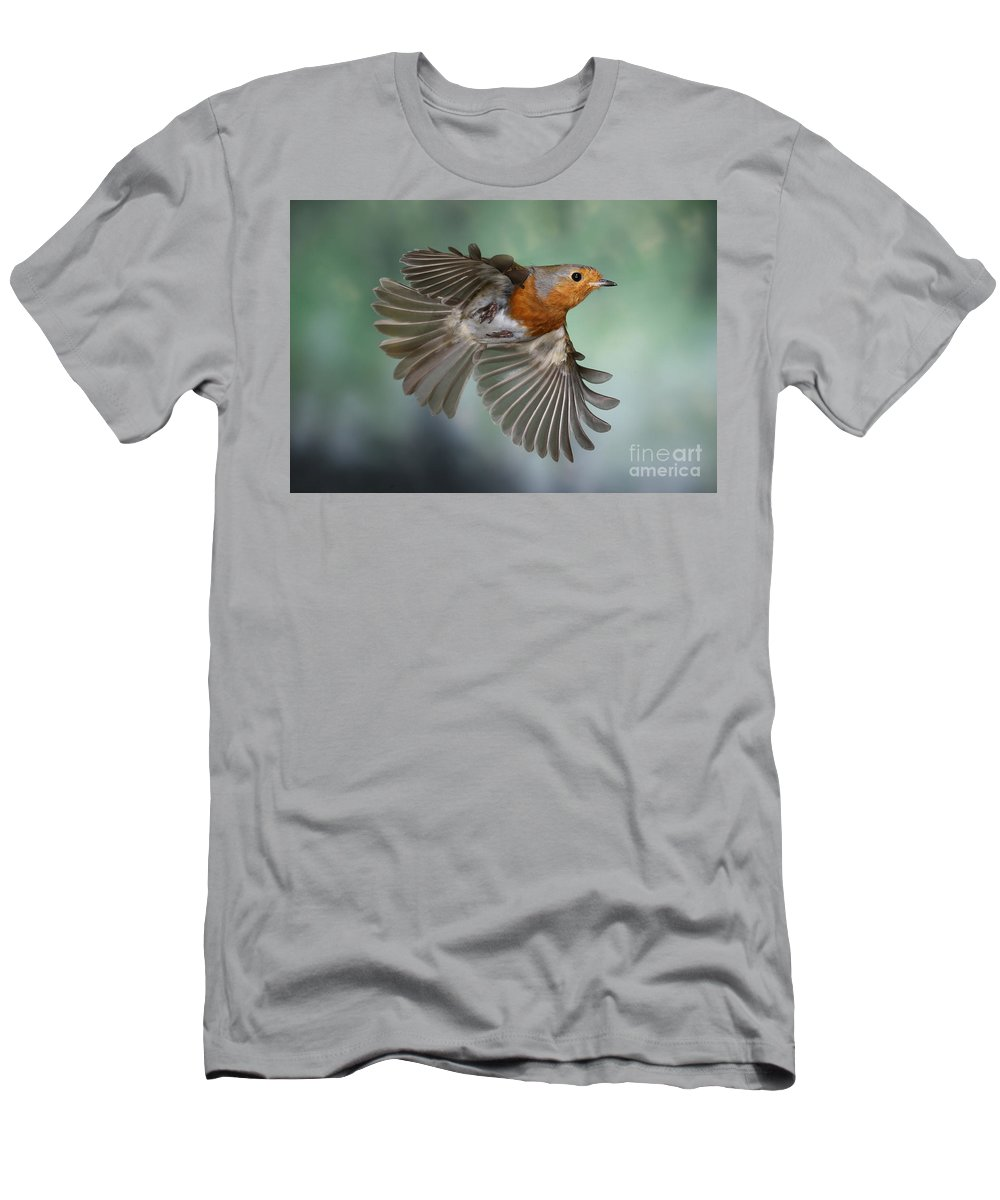 European Robin Men's T-Shirt (Athletic Fit) featuring the photograph Robin On The Wing by Warren Photographic