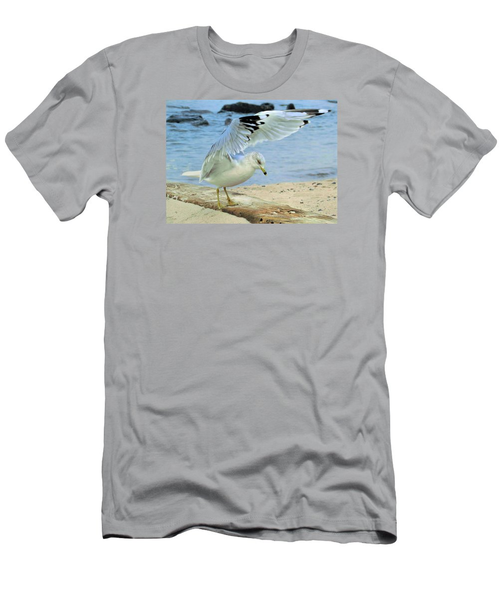 Seagull Men's T-Shirt (Athletic Fit) featuring the photograph Seagull On The Beach by Nina Bradica