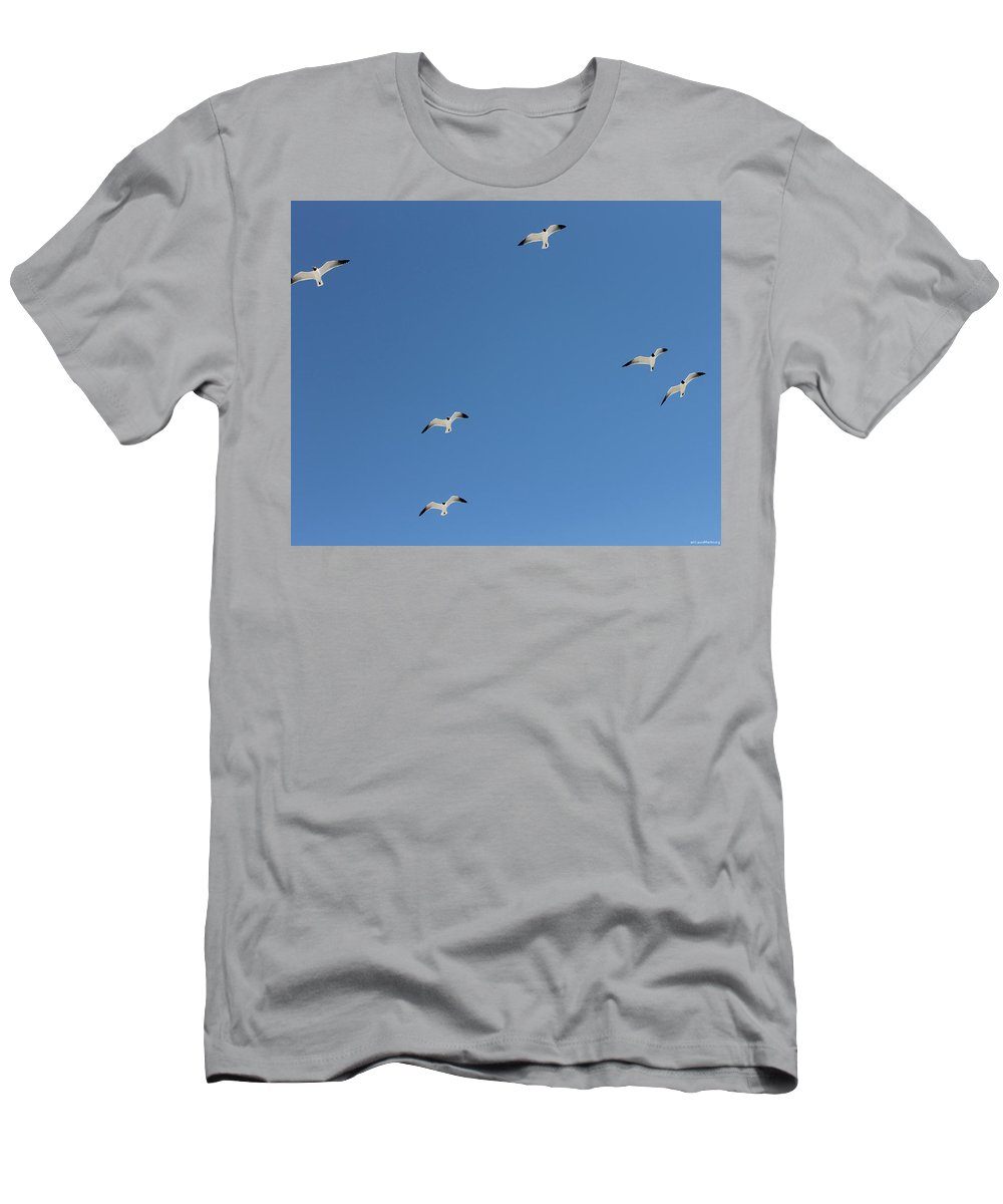 Blue Men's T-Shirt (Athletic Fit) featuring the photograph Seagulls 6 by Laura Martin