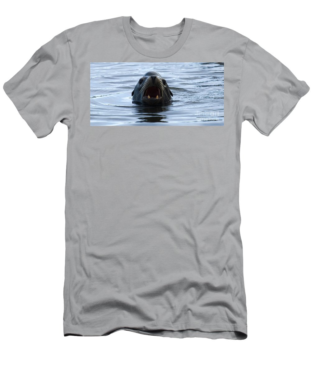 Boats Men's T-Shirt (Athletic Fit) featuring the photograph Seal by Bob Christopher